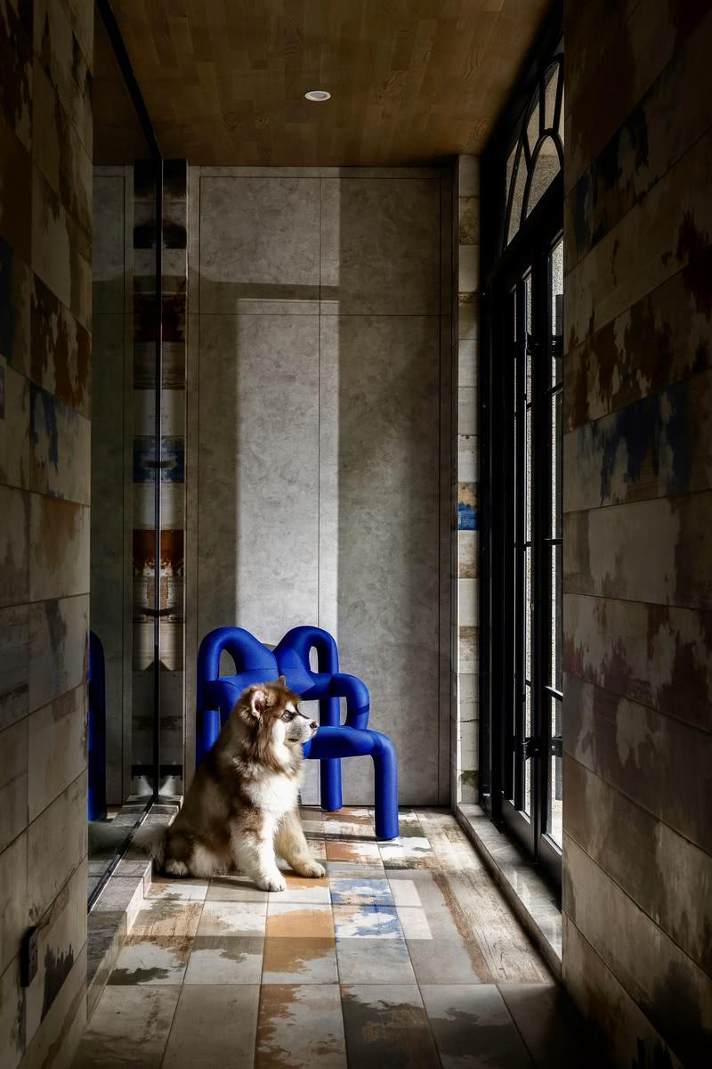 门厅采用自然纹理的墙砖和地砖,天然无瑕,一把造型独特的蓝色椅子增添几许趣味。范姐家的小阿拉斯加常常在这等着主任归家,一静一动,让整个空间在空灵中不失鲜活。