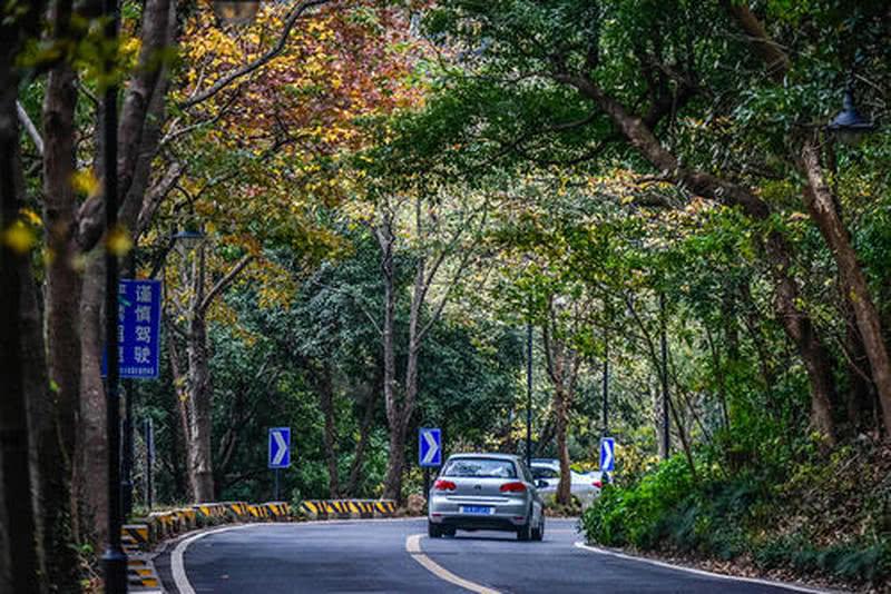 满觉陇路 Manjuelong Road ©Internet